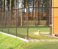 We staan er misschien niet bij stil, maar bij de meeste mensen is de afsluiting rond de tuin ook een beetje afsluiting voor dieren.